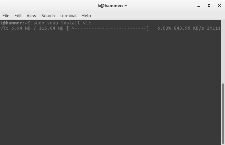 Screenshot of how to install snaps from the terminal using 'sudo snap install [snap name]'